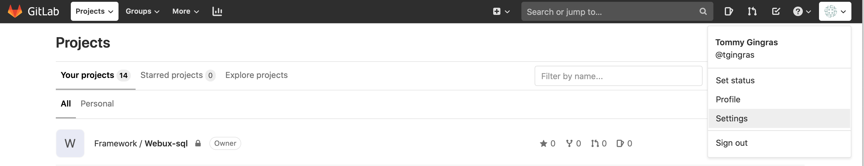 Gitlab options de l'usager